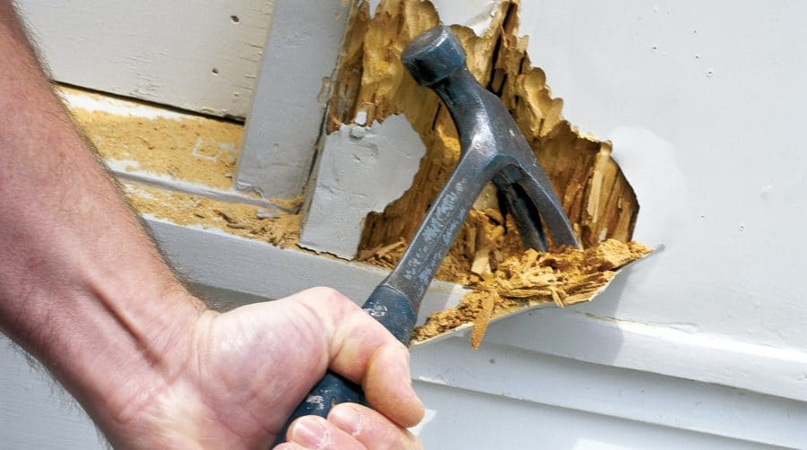 A Hammer Digging into Dry Rot - Mark King Properties